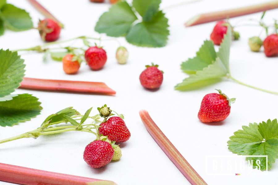 Strawberry-Rhubarb Margaritas | Designs of Any Kind